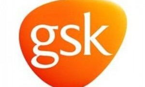 services provided for GSK