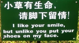 translationfail14